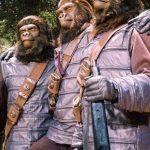 Dzień z Planetą Małp na kanale TNT