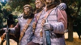 Dzień z Planetą Małp na kanale TNT Film, LIFESTYLE - Już w najbliższą niedzielę, 22 kwietnia br., widzowie kanału TNT spędzą cały dzień z kultową serią filmów science-fiction ?Planeta Małp?. Emisje filmów rozpoczną się od godziny 7.45.