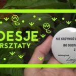 Kreatywne warsztaty z Loesje w Wola Parku