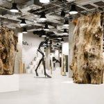 Cykl wystaw młodych artystów w Centrum Praskim Koneser